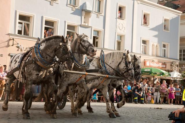 Auszug beim Gäubodenvolksfest in Straubing