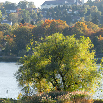 Unterwegs auf dem Donauradweg mit Blick auf das Kloster Schweiklberg